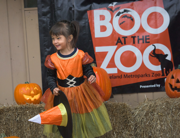 Boo at the Zoo at the Cleveland Zoo